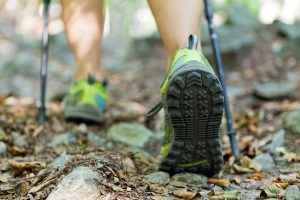 Woman hiking and nordic walking in autumn forest